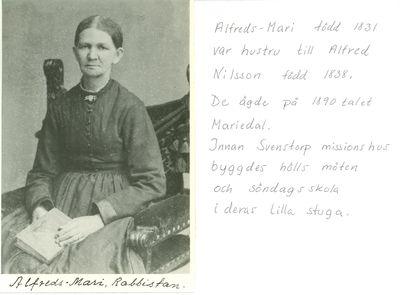 Alfreds mari rabbistan