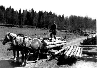Holger johansson kommer med ett stocklass